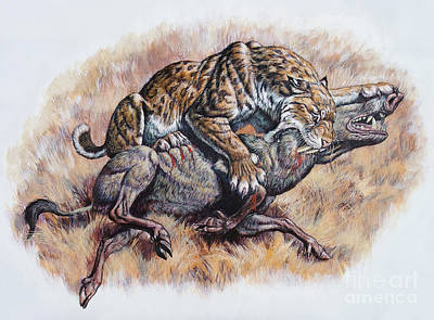 Smilodon Dirk Sabertooth Killing Art Print