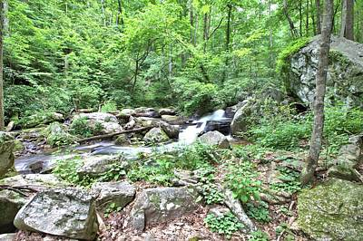 Photograph - Smith Creek Downstream Of Anna Ruby Falls - 2 by Gordon Elwell