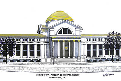 Pen And Ink Historic Buildings Drawings Drawing - Smithsonian Museum Of Natural History by Frederic Kohli