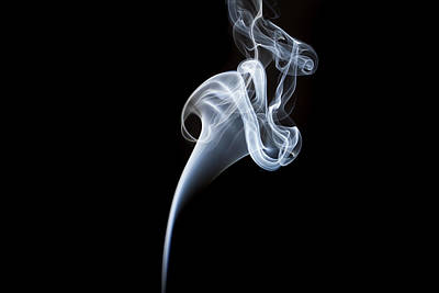 Photograph - Smoke Flower by David Barker