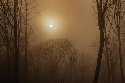 Smoke From A Woodland Fire Obliterates Art Print
