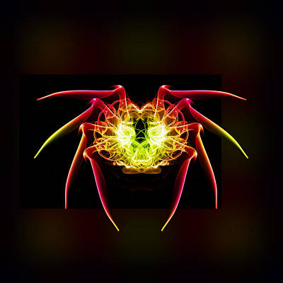 Smoking Trails Photograph - Smoke Spider 1 by Steve Purnell