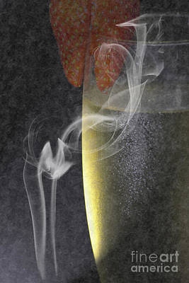 Sparkling Wines Digital Art - Smokey  by Brian Roscorla
