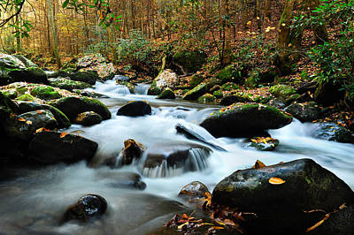 Photograph - Smokey Mountain Creek by Donald Fink