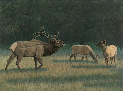 Smokey Mountains Painting - Smokey Mountain Elk by Wendy Somero Bello