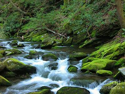 Smokey Mountain Spring Art Print by Don F  Bradford