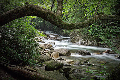 Photograph - Smokey Mountain Stream. No 547 by Randall Nyhof