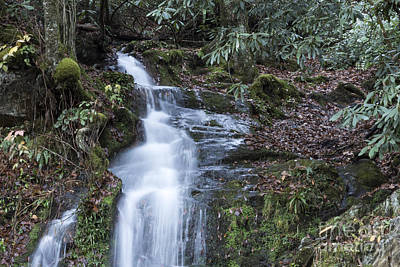Photograph - Smokey Mountain Waterfall by Michael Waters