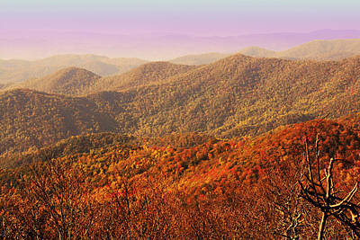 Smokey Mountain Drive Photograph - Smokey Mountains by Will Burlingham