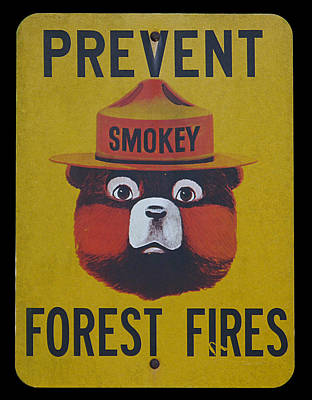 Photograph - Smokey Says - Prevent Forest Fires by Richard Reeve