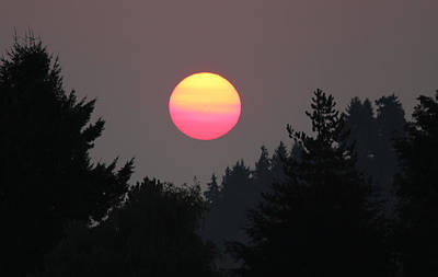 Photograph - Smokey Sunrise by E Faithe Lester