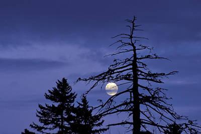 Photograph - Smoky Moon by Jim Dollar