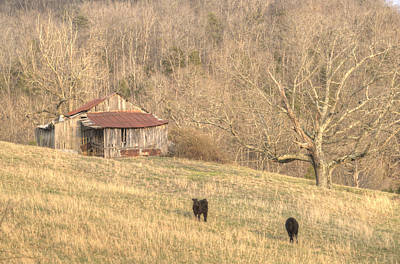 Tennessee Hay Bales Photograph - Smoky Mountain Barn 8 by Douglas Barnett