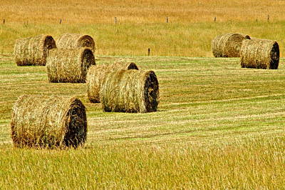 Tennessee Hay Bales Photograph - Smoky Mountain Hay by Frozen in Time Fine Art Photography