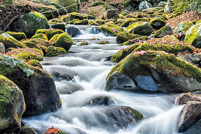 Photograph - Smoky Mountain Rapids by Victor Culpepper