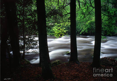 Photograph - Smoky Mountain Stream #2  2009 by Matthew Turlington