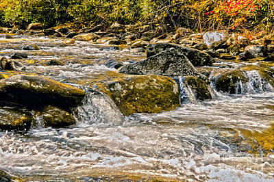 Photograph - Smoky Mountain Stream by Dawn Gari