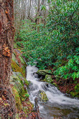 Photograph - Smoky Mountain Stream by Mark Bowmer