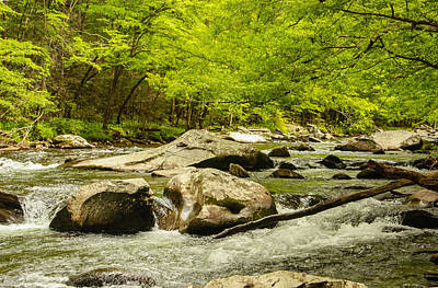 Photograph - Smoky Mountain Stream by Robert Hebert
