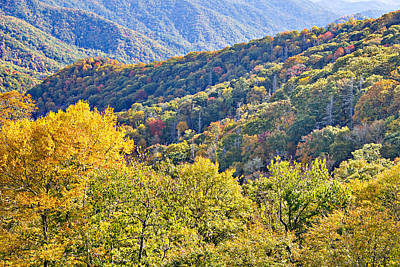 Smoky Mountain Valley Art Print
