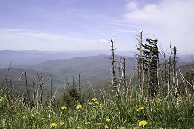 Smoky Mountain View Tennessee Art Print