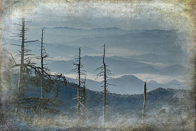Photograph - Smoky Mountain Vista by Randall Nyhof
