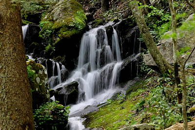 Photograph - Smoky Mountain Water Fall by Lawrence Scott