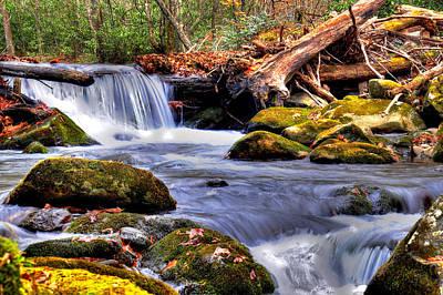 Smoky Mountain Waterfall Art Print by Craig T Burgwardt
