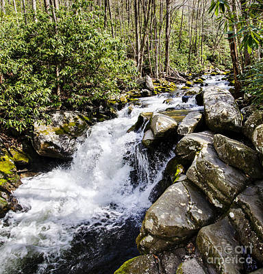 Photograph - Smoky Mountain Waterfall by Paul Mashburn