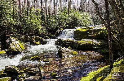 Photograph - Smoky Mountain Waterfalls by Paul Mashburn