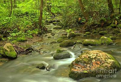 Photograph - Smoky Mountains Fighting Creek by Adam Jewell