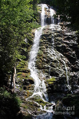 Photograph - Smoky Mountains Waterfall by Jerry Bunger