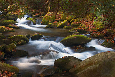 Photograph - Smoky Mtn Autumn Stream by Paul W Faust -  Impressions of Light