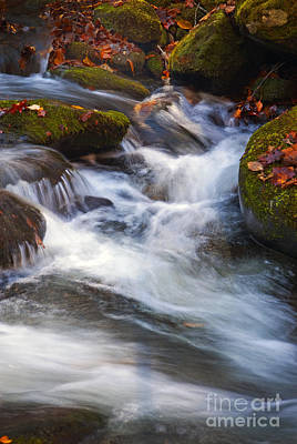 Photograph - Smoky Mtn Stream - 418 by Paul W Faust -  Impressions of Light