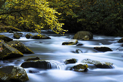 Autumn Landscape Photograph - Smoky Stream by Chad Dutson
