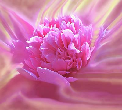 Keith Richards - Smooth Pink by Ian  MacDonald