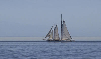 Photograph - Smooth Sailing by Wes and Dotty Weber