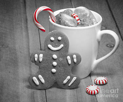 Photograph - Snack For Santa by Juli Scalzi