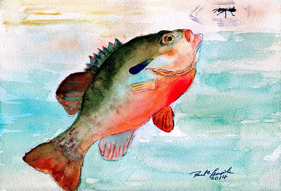 Panfish Painting - Snack Time by Paul Temple