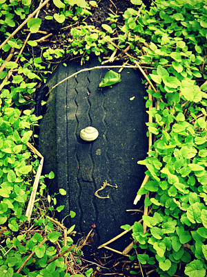 Photograph - Snail And Tire by Cyryn Fyrcyd