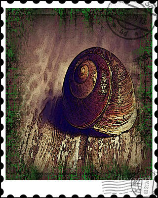 Photograph - Snail Mail by Don Melton