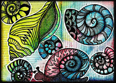 Artist Trading Card Drawing - Snaily Shells by Cindy Angiel