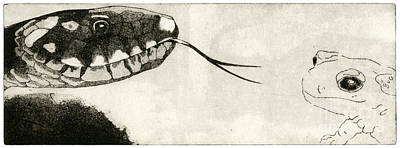 Animals Paintings - Snake And Salamander - When There Is No Way Forward  - Prey System - Food Chain - Etching Series by Helga Pohlen \ Urft Valley Art