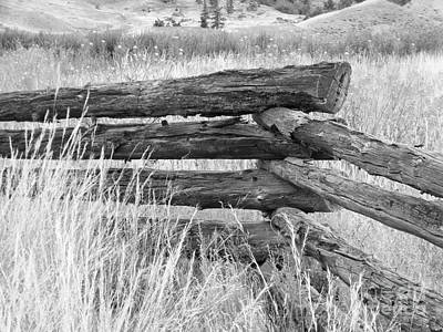 Photograph - Snake Fence  by Ann E Robson