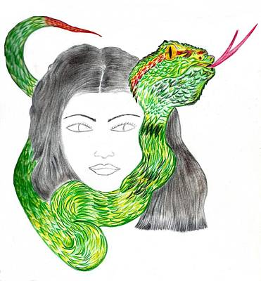 Drawing - Snake Passion by Nicole Burrell