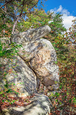 Photograph - Snake Rock In Autumn by Mary Almond