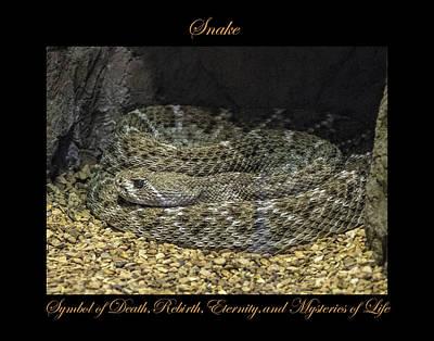 Photograph - Snake Symbol Of by Marty Maynard