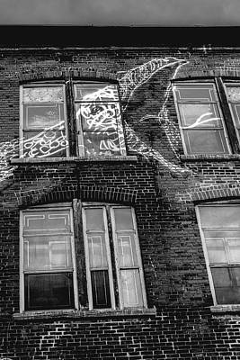 Photograph - Snaked by Valerie Rosen