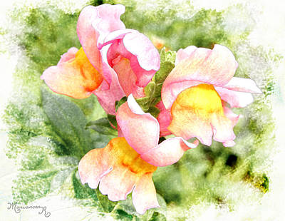Digital Art - Snapdragons by Mariarosa Rockefeller