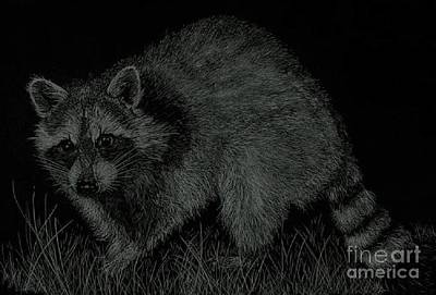 Drawing - Sneaky Critter by Daniel Smith